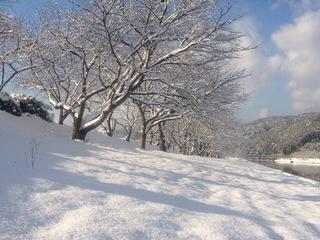 130101三刀屋川風景4.jpeg